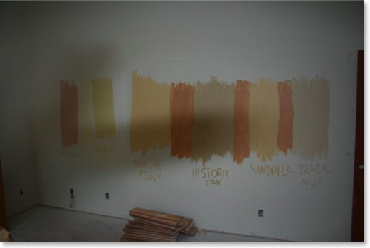 Paint samples are on the walls