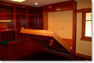 Library cabinets with Murphy bed